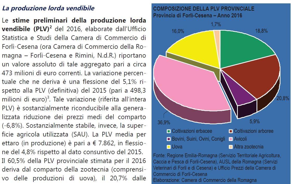 Rapporto sull 39 economia for Camera di commercio della romagna